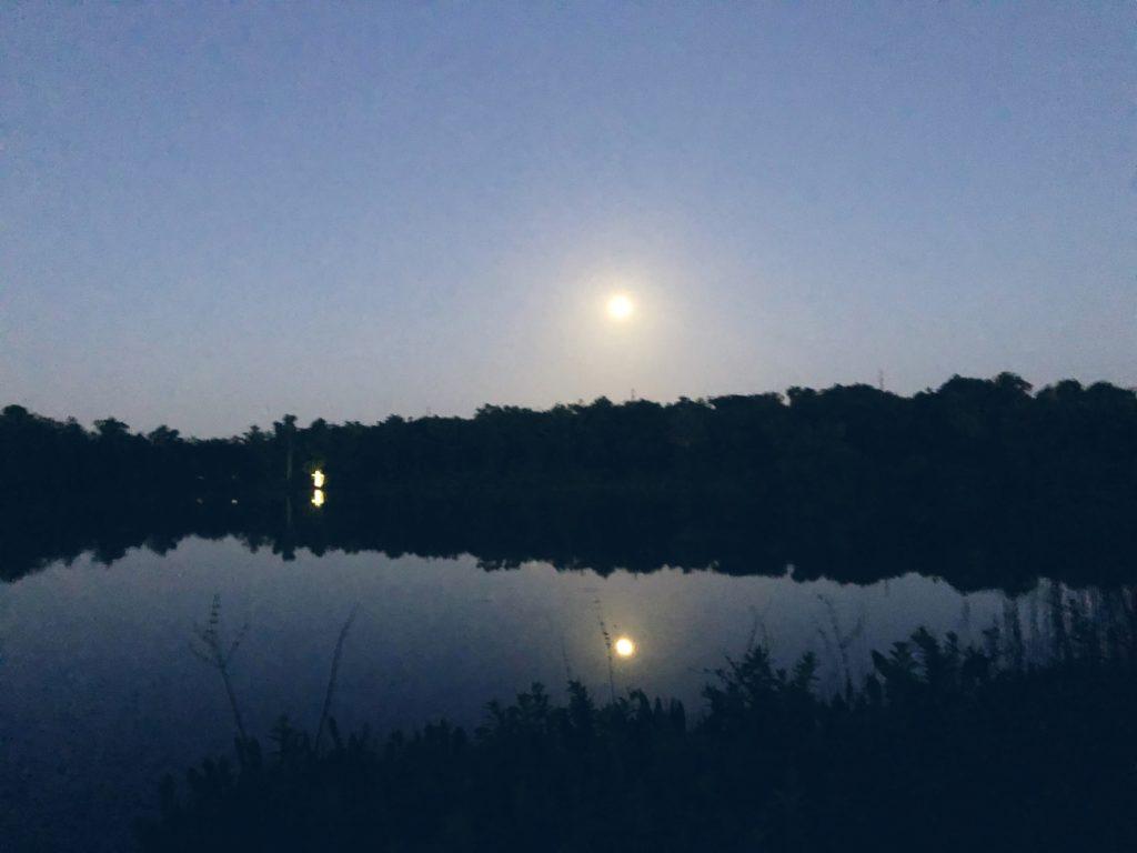 Nights at Lakegem